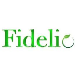 >Fidelio International Sdn Bhd
