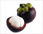 Fresh Fruits : Mangosteen