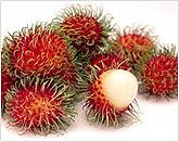 Fresh Fruits : Rambutan