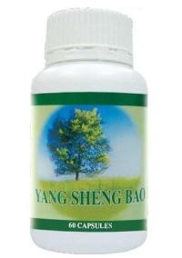 Nutrition - Yang Sheng Bao