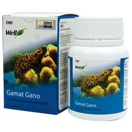 Well 3 Gamat Gano