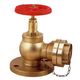 Fire Hydrant Valve (AMIVSB-040201)