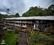 4D3N Lemanak Iban Longhouse Experience