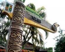 Company Trip 3D2N Miri City + Niah Caves