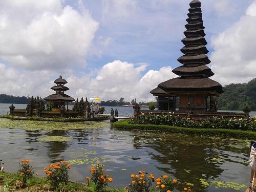 4Days 3Nights Bali Dolphin Tour (Min.2Person)