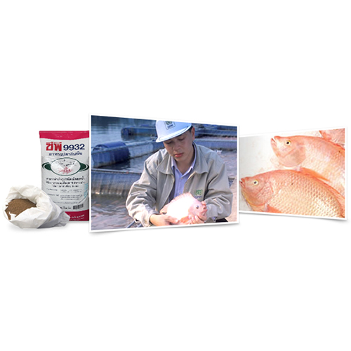 Feed: Aquaculture - Aquatic Marine Animal Feed