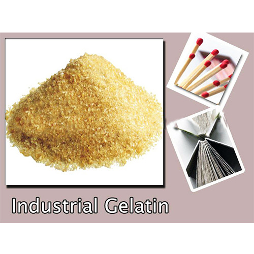 Bone Glue Gelatin