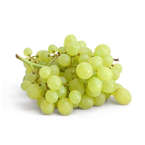 Grapes Thompson