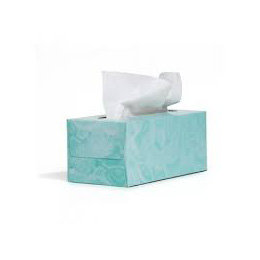 PASEO Angel & Butterfly 2ply Facial Tissue
