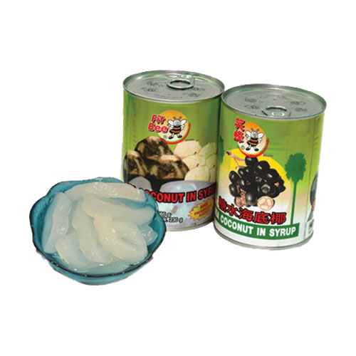 Canned Sea Coconut in Heavy Syrup