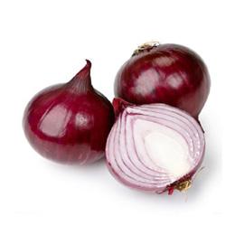 Fresh onion7
