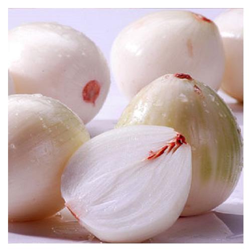 Fresh onion8