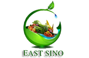 East Sino International Industrial Limited