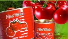 canned tomato paste in 400g