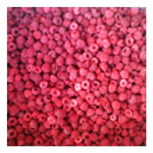 IQF raspberries