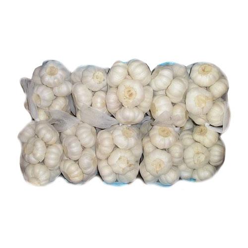 Fresh Dehydrated White Garlic