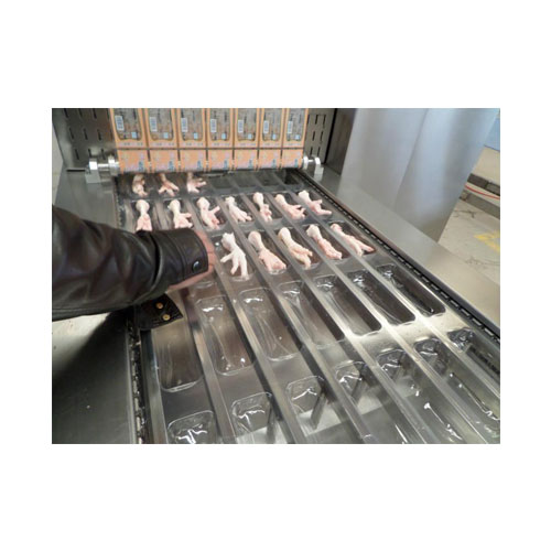 Automatic Food Disposable Film Packing Machine