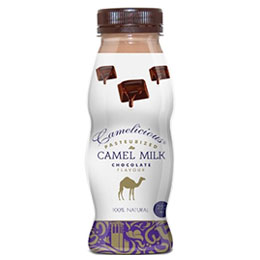 Flavored Camel Milk: Chocolate