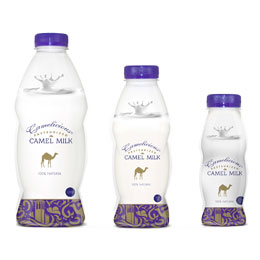 Plain Camel Milk