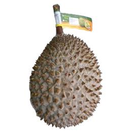 Frozen Durian: Whole Durian Fruit
