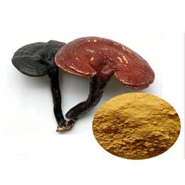 Reishi Mushroom Extract /Ganoderma Extract