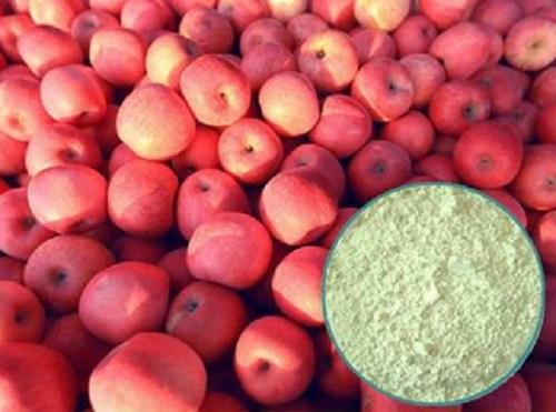 Organic Apple powder