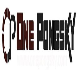 PT. One PongSky Store