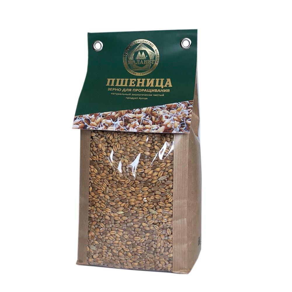 Altai Wheat Grain