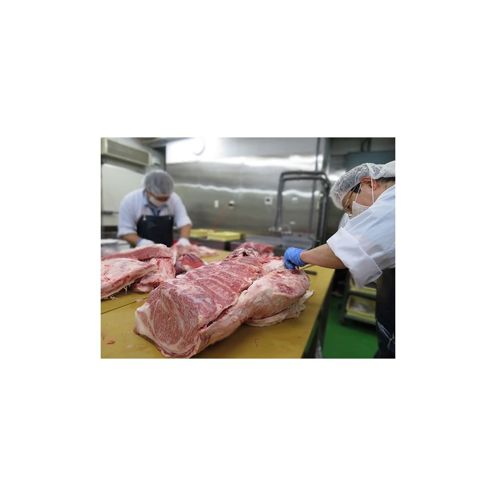 Japan Wagyu frozen beef meat importers with Rich variety