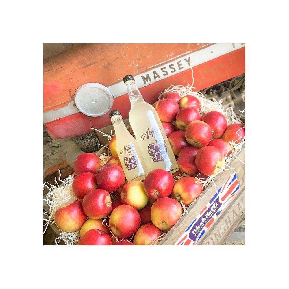 Apple Juice - Mudwalls 25/75cl
