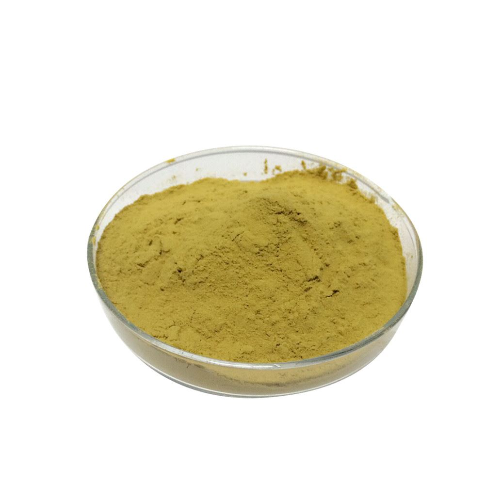Food grade High purity Acid Protease Enzyme