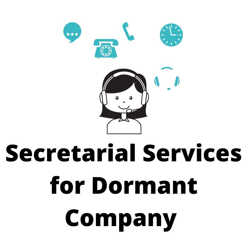 Secretarial Services for Dormant Company