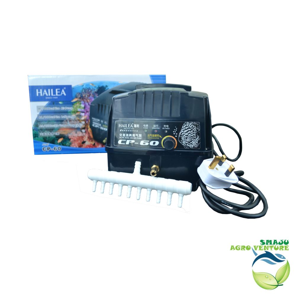Rechargeable air pump cp-60