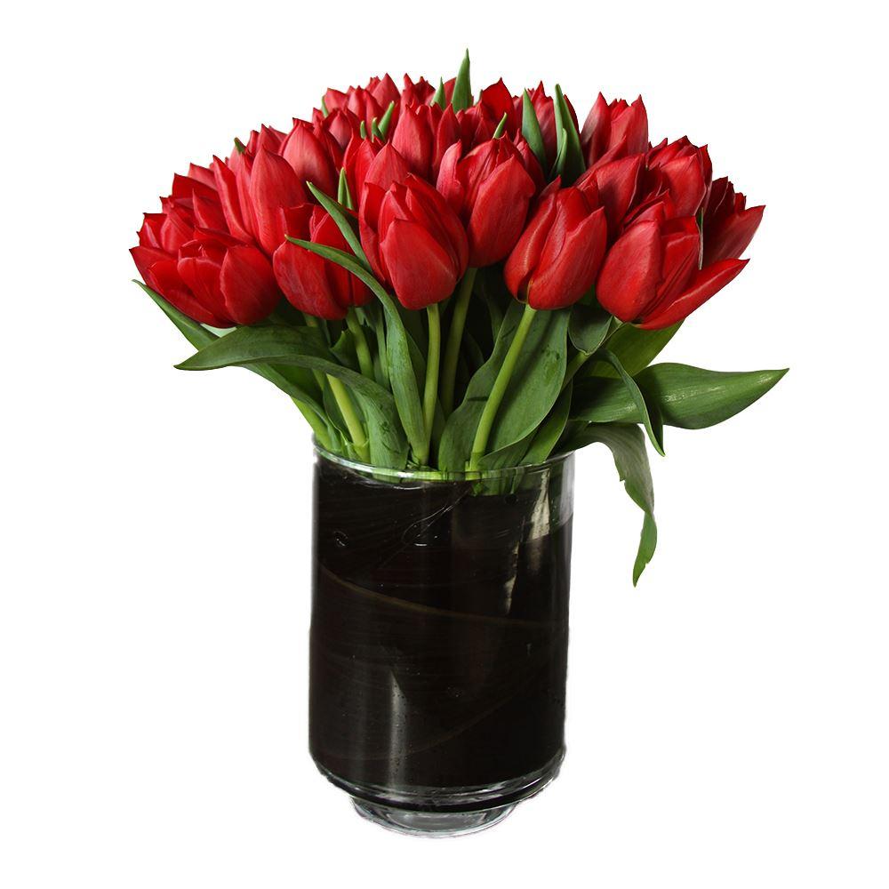 Tulips Truffle Bundle