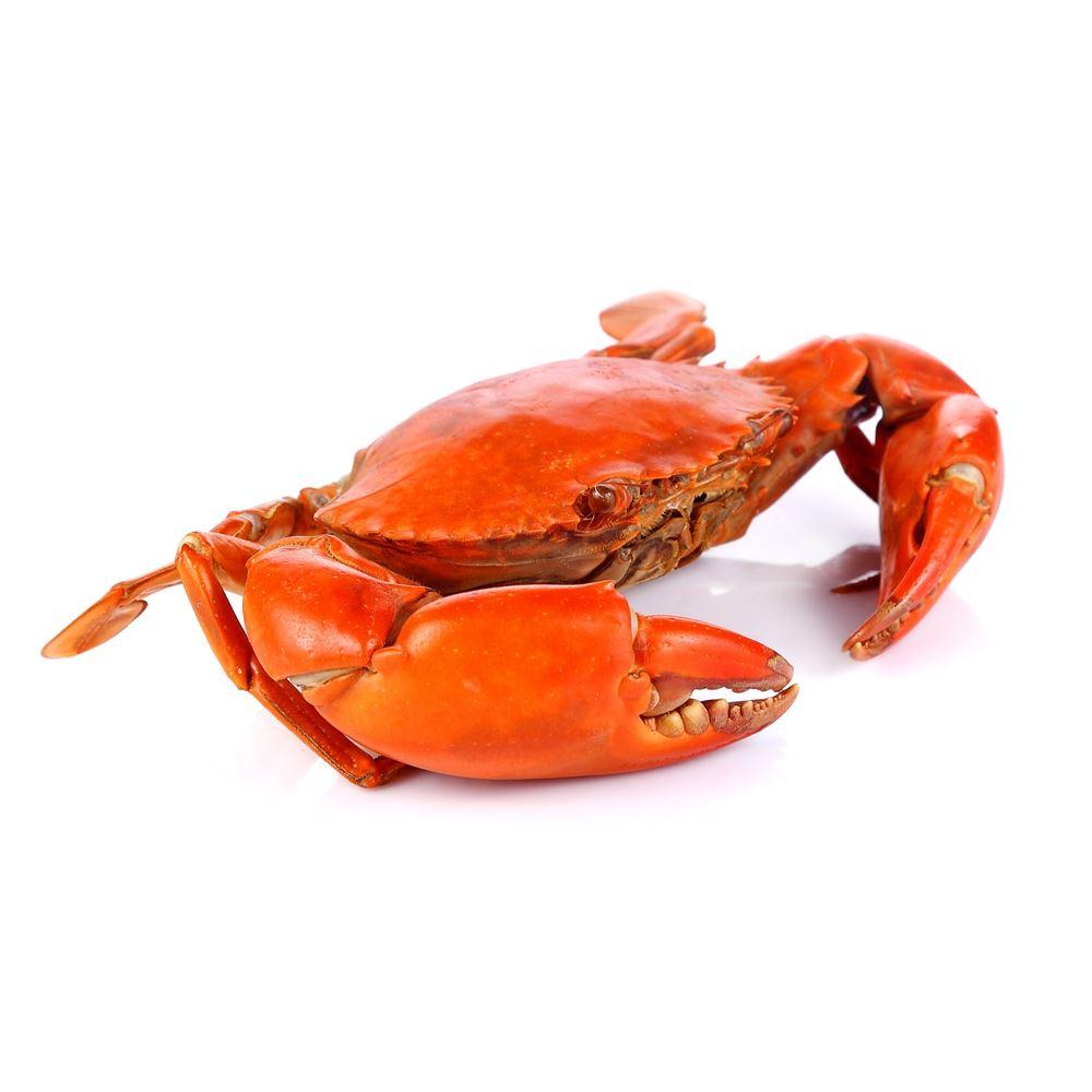 Crabby Crabs