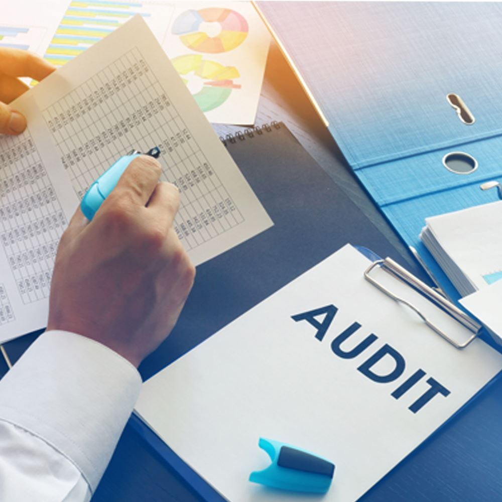 Audit and Taxation Services